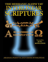 Messianic Aleph Tav Interlinear Scriptures (MATIS) Volume Five Acts-Revelation, Aramaic Peshitta-Greek-Hebrew-Phonetic Translation-English, Bold Black Edition Study Bible